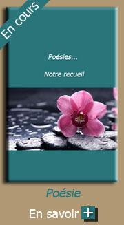 Poesies notre recueil poesie